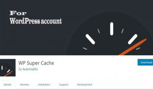 Install WP Super Cache on your WordPress Account