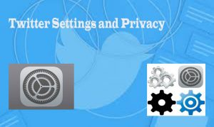 Twitter Settings and Privacy - Change your Twitter Settings and Privacy